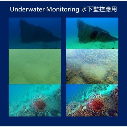 AI for underwater monitoring.jpg